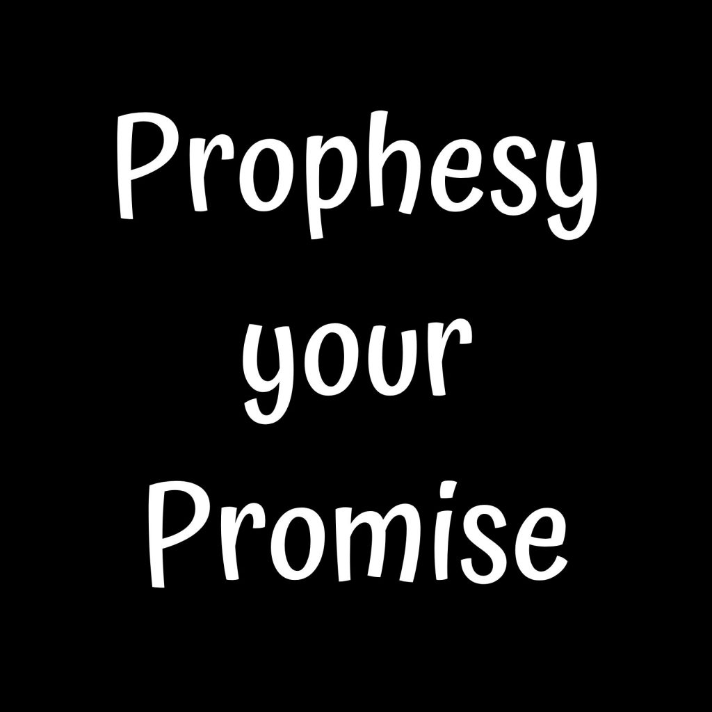 A sign that says: Prophesy Your Promise