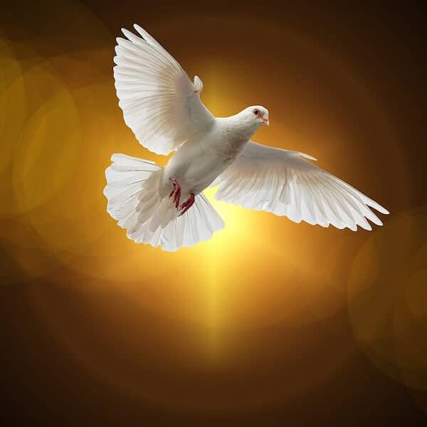 Holy Spirit, please heal the people with COVID.